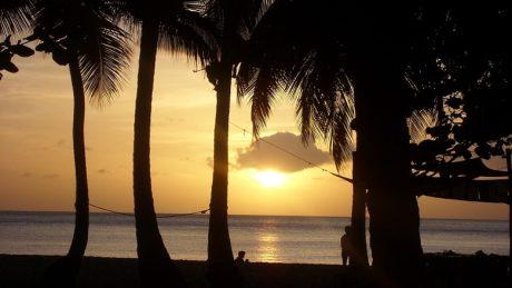 Se laisser enchanter par la beauté de la Guadeloupe