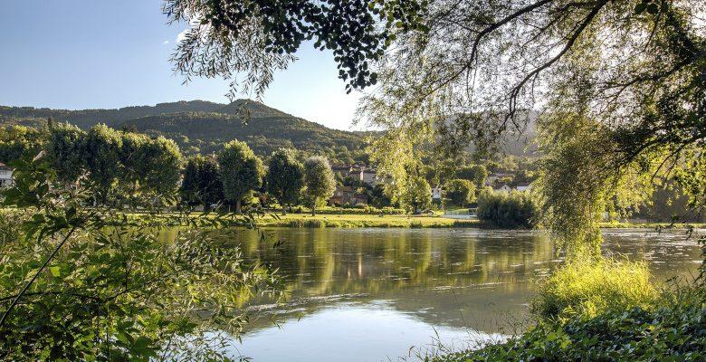 Idées d'activités à Ancenis : réserver une croisière pour découvrir la Loire